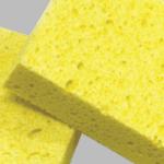 Cellulose Sponges Kentucky
